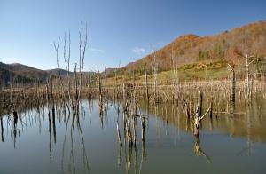 Lake Tuckahoe